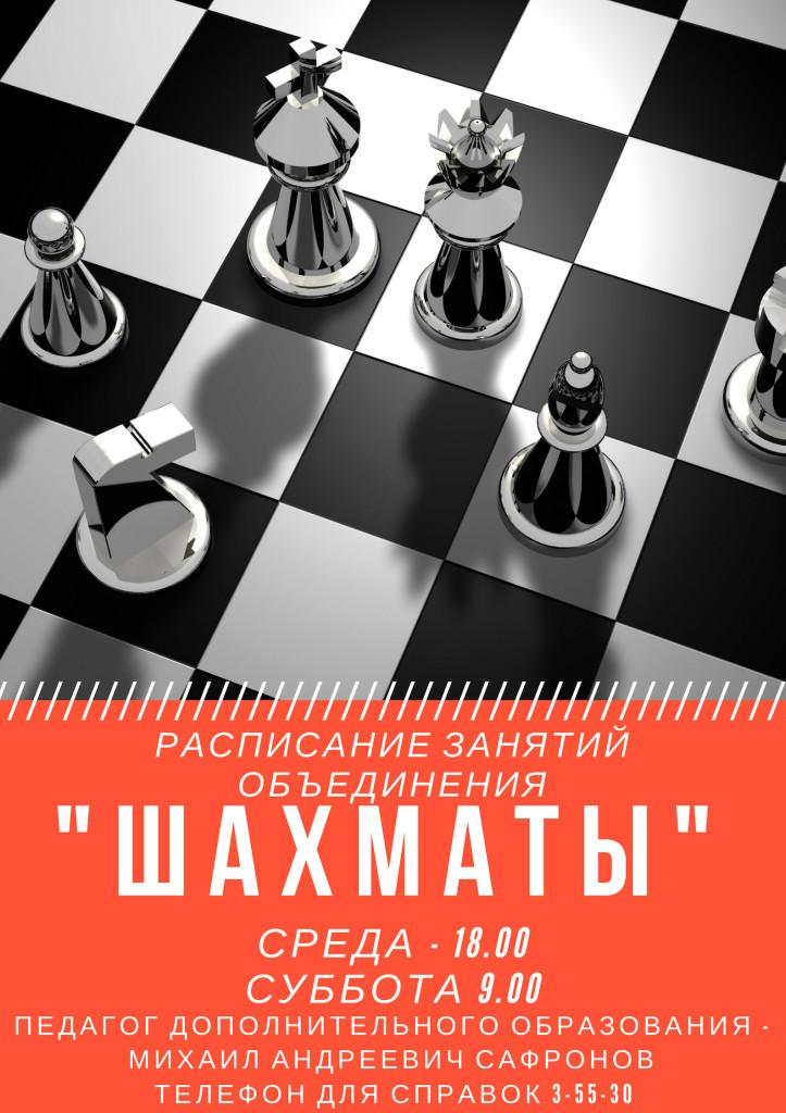 Шахматы расписание